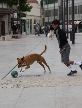 Lisbon / June 7th 2014