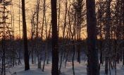Inari, Finland / January 2nd 2018