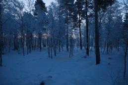 Inari, Finland / January 4th 2018