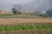 on the road from Kathmandu to Bandipur, Nepal / February 21st 2018