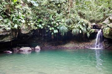 Bassin paradis, Guadeloupe / February 4th 2020